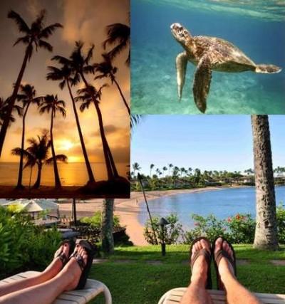 Napili Kai Views From The Beach Photo Collage
